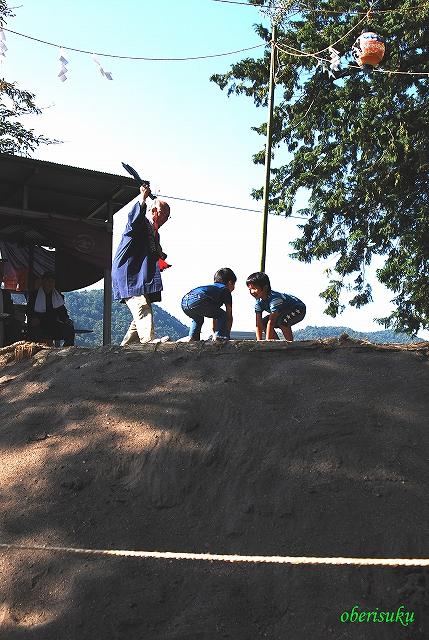 Syanagiharah2010_a