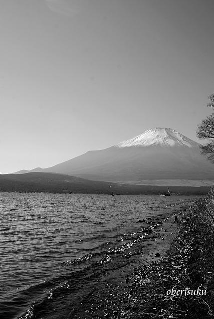 Sfujiyamanakako_2
