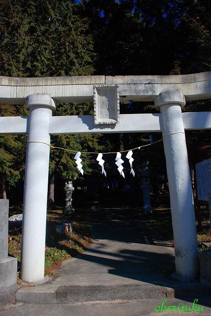 Sshizurih210101_1